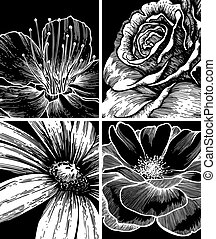 Hintergrund mit Blumen, Handabschneidung. Vektor Illustration.