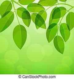 Hintergrund mit Foliage