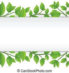 Hintergrund mit grünen Zweigen