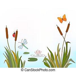 hintergrund, oder, fliegendes, see, karikatur, abbildung, waterlily, sommer, insekten, vektor, riede, fruehjahr