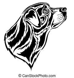 hintergrund, vektor, stilisiert, profil, kopf, logo, freigestellt, schwarz, rottweiler, abbildung, gegenstand, weißes
