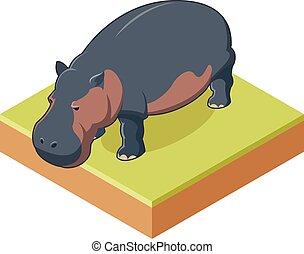 Hippo isometrische Ikone 2.