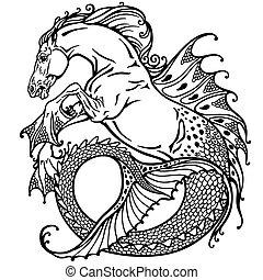 Hippocampus weiß