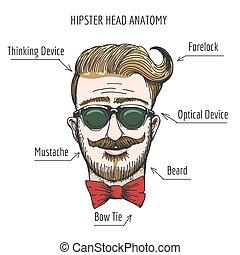 Hipsterkopf Anatomie