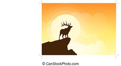 Hirsche Silhouette auf einer Klippe bei Sonnenuntergang