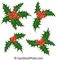 Holly Beeren bereit. Mistletoe - Weihnachtssymbol vektorgrafik