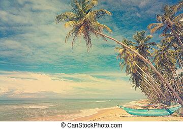 Holzboote unter Palmen.