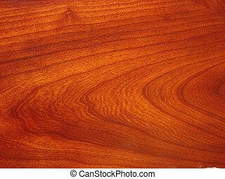 Holzkorn