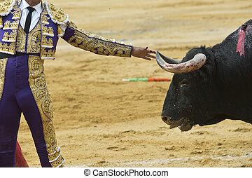 horn., bull´s, stierkämpfer, berühren