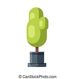 houseplant, oder, blumentopf, abbildung, natürlich, daheim, entwerfen element, dekoration, vektor, baum, kleingarten