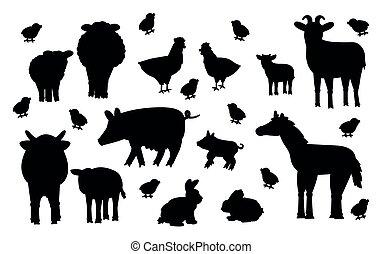 huhn, silhouette, reizend, vektor, hase, satz, hintergrund., karikatur, kanninchen, mutter, schafe, kind, hahn, klein, ram, kälbchen, kuh, groß, farm., stier, ziege, freigestellt, weißes, schwein, tiere, pferd