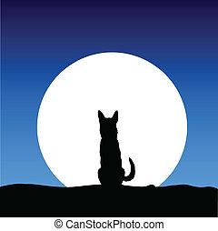 Hund auf dem Mond