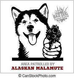 hund, malamute, gangster., gewehr, -, kopf, alaskisch, lustiges, revolver