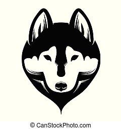 hund, sibirisch, schwarz, white., husky., kopf