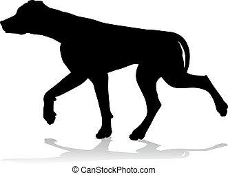 hund, silhouette, haustier, tier