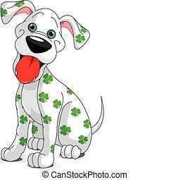 hund, str., lächeln, tag, patrick's, reizend