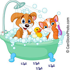 Hund und Katze baden