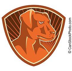 Hunde-Labrador-Kopf-Schild.