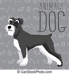 hunden, sammlung