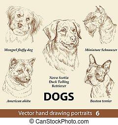 hunden, zeichnung, 6, satz übergeben