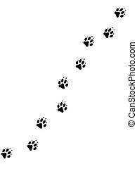 Hundepfotenabdrücke 2