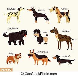 Hunderassen