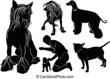 Hundesammler.