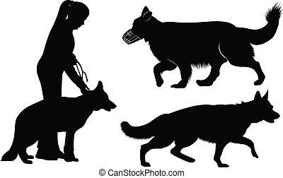 Hundesilhouetten deutsche Schäferhunde.