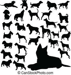 Hundevektoren