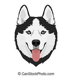 Husky Hundekopf