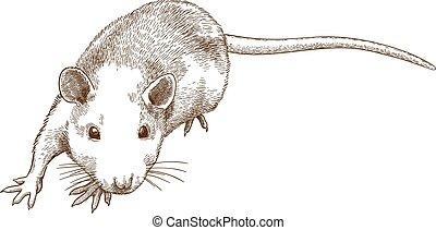 Ich graviere die Illustration der Maus.