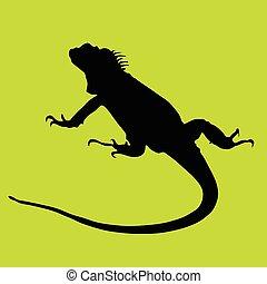 Iguana-schwarze Silhouette auf Grünba