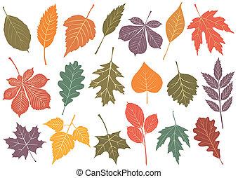 Illustration des 19. Herbstes