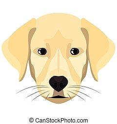 Illustration Dog Golden Retriever.