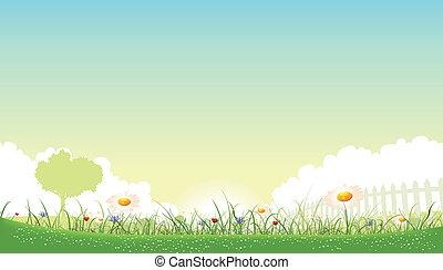 Illustration eines wunderschönen Gartens Blumenlandschaft mit Gänseblümchen, Mohnblumen und Kornblumen im Frühling oder Sommer