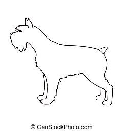 illustration., symbol, vektor, hintergrund., rassen, freigestellt, stil, weißer hund, schnauzer, ikone, bestand, grobdarstellung