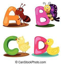 Illustrator-Alphabet-Tiere.