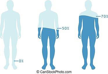 infographic, body., ausstellung, wasserwaage, abbildung, wasser, balance., vektor, menschliche , prozentsatz