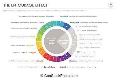 infographic, geschaeftswelt, begleitung, effekt, horizontal, verhältnis