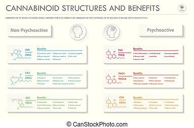 infographic, horizontal, geschaeftswelt, cannabinoid, vorteile, stuctures