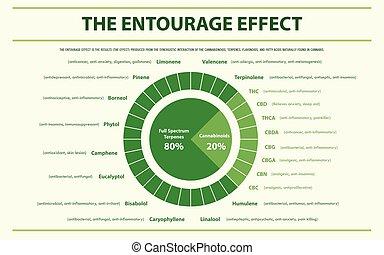 infographic, verhältnis, begleitung, horizontal, effekt
