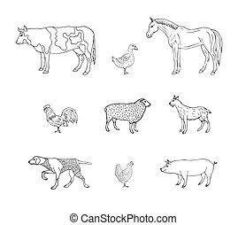 inländisch, gezeichnet, hand, vektor, tiere, satz