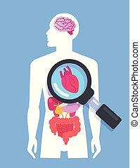Innere Organe auf menschlichem Körper-Mann-Banner. Medizinforschungskonzept. Vector Flat Cartoon Graphic Design isoliert Illustration