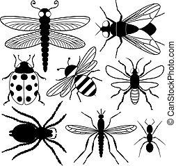 insekt, acht, silhouetten