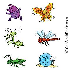 insekt, satz, tier