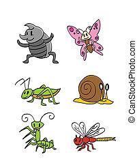 Insektentiersammlung.