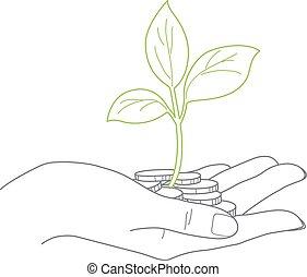 Investitionskonzept, Nähe der weiblichen Hand halten Münzen mit Pflanze.