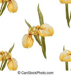 Iris-Blumenmuster.