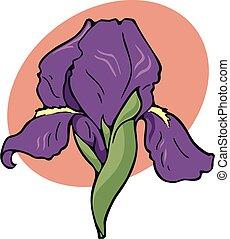 iris, emblem
