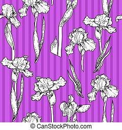 Iris violet Muster